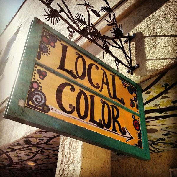 Local Color shop in Brevard North Carolina