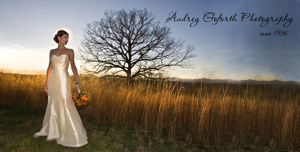 asheville wedding photography by audrey goforth