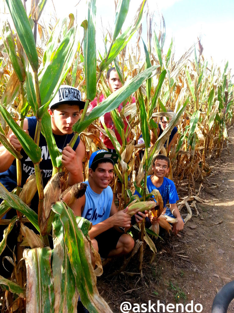 hendersonville nc corn maze