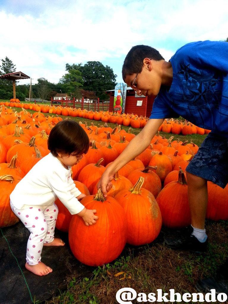 hendersonville nc pumpkins