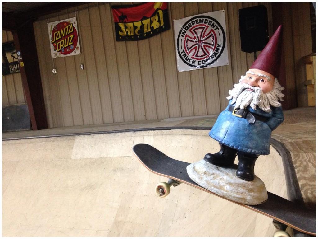 asheville thrashville skateboard