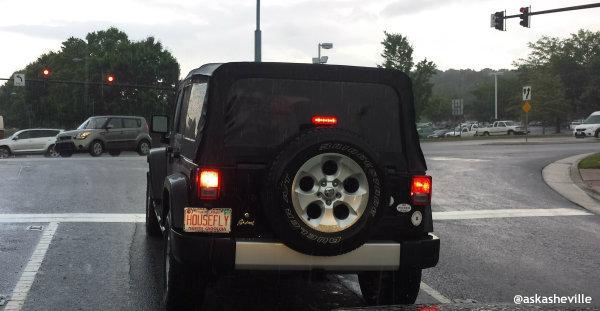 asheville housefly license plate