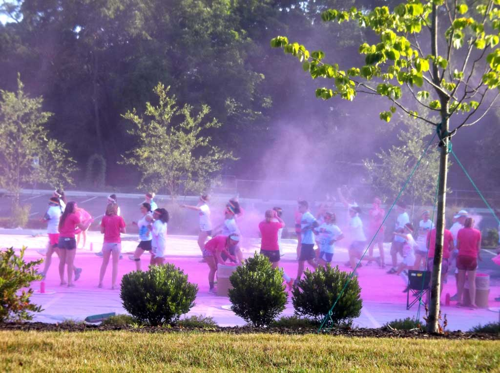asheville color run pink
