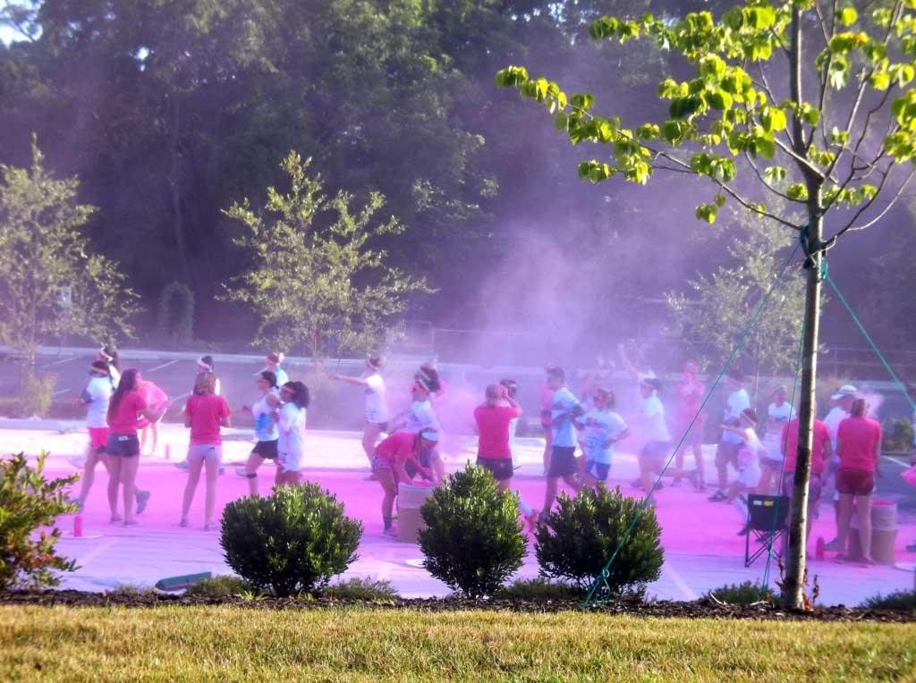 asheville color run pink